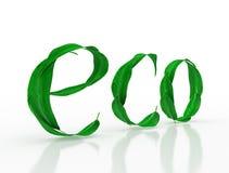 La parola Eco con le foglie verdi su un fondo bianco Immagini Stock