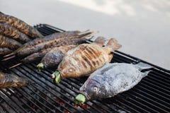 La parrilla caliente pesca por ejemplo Tilapias de los siluros y del Nilo en la malla Imágenes de archivo libres de regalías