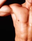 La parte attraente di uomo il corpo Fotografie Stock Libere da Diritti