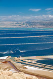 Mar muerto de las plantas de las piscinas. Imagen de archivo