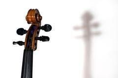 La parte superior de un violín, de un cuello, de clavijas de adaptación y de una voluta en un wh imagenes de archivo