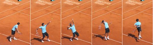 La parte superiore ha allineato il giocatore di tennis Roger Federer Immagini Stock