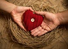 La participation d'homme et de femme a tricoté le coeur dans le nid d'oiseaux Photos stock