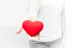 La participation de femme et la protection donnent une forme rouge de coeur sur le plan rapproché blanc de fond Photographie stock