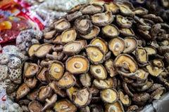 La partie du champignon sec photographie stock libre de droits