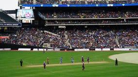 La partita 2015 delle Tutto stelle del cricket a New York Fotografia Stock Libera da Diritti