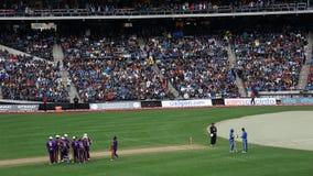 La partita 2015 delle Tutto stelle del cricket a New York Fotografia Stock