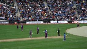 La partita 2015 delle Tutto stelle del cricket a New York Immagine Stock