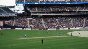 La partita 2015 delle Tutto stelle del cricket a New York Immagini Stock Libere da Diritti