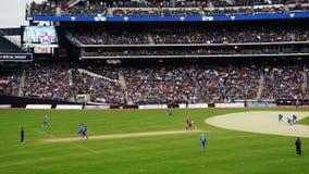 La partita 2015 delle Tutto stelle del cricket a New York Immagine Stock Libera da Diritti