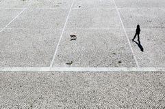 La passeggiata Fotografie Stock Libere da Diritti