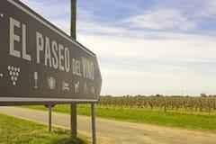 La passeggiata del vino, Uruguay Immagini Stock