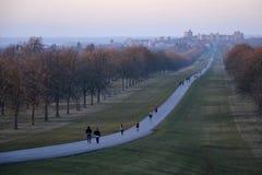 La passeggiata lunga, Windsor Great Park, Inghilterra, Regno Unito Immagini Stock