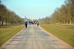 La passeggiata lunga, Windsor Great Park, Inghilterra, Regno Unito Fotografia Stock