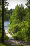La passerelle en bois vers le lac dans la forêt photo stock