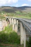 La passerelle Tara est passerelle de voûte au-dessus du fleuve Tara Image libre de droits