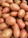 La patata dulce orgánica fresca se destaca entre muchos el fondo de la patata en supermercado Montón de la raíz de la patata Text imagen de archivo libre de regalías