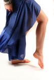 La patte du danseur Photo libre de droits
