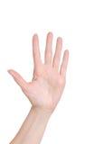 La paume d'une main de femme sur un blanc a isolé le fond Photographie stock