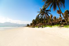La paume et le sable blanc de doclet tropical de plage aménagent en parc photos stock