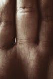 La paume et les doigts des hommes Photo libre de droits