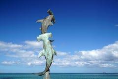 La Paz Baja California Sur, Mexiko-Strand nahe der Seepromenade nannte Malecon hämmerte Haifischstatue lizenzfreie stockfotos