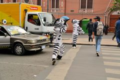 In La Paz, Bolivia workers dressed as Zebras teach Royalty Free Stock Photo