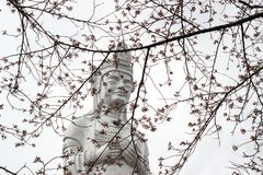 La paz Kannon de Funaoka y los cerezos en la cima de la montaña del castillo de Funaoka arruinan el parque, Shibata, Tohoku, Japó Fotos de archivo libres de regalías