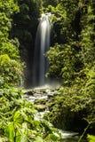 La Paz Waterfalls en la selva tropical Foto de archivo libre de regalías