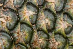 La peau de l'ananas image stock