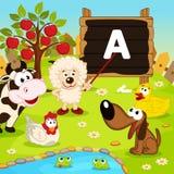 La pecora insegna agli animali Immagini Stock Libere da Diritti