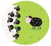 La pecora nera è sola nel mezzo delle pecore bianche Immagini Stock Libere da Diritti