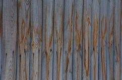 La peinture bleue et brune, a verticalement localisé le fond gentil photo libre de droits