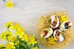 La peinture de Pâques eggs dans le style de decoupage avec le narcisse Image stock