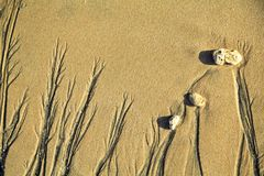 La peinture de sable 2 Photographie stock