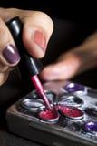La peinture faite main et décorent la boîte en métal avec le fil et l'aileron en métal Image libre de droits