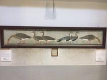 La peinture moyenne égyptienne d'oies images libres de droits