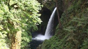 La película de Metlako cae en Eagle Creek en la garganta del río Columbia en Hood River County, Oregon Estados Unidos 1080p almacen de video