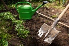 La pelle creuse la terre pour des jeunes plantes Photos libres de droits