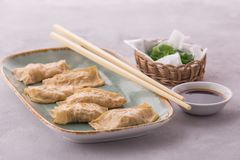 La pelle del tofu degli gnocchi del pollo è servito sul piatto con la salsa di soia immagini stock libere da diritti