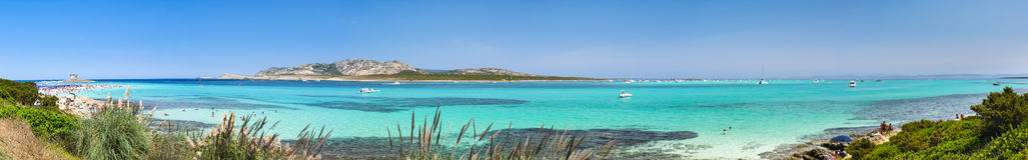 La Pelosa beach panorama stock image