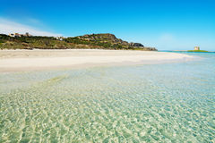 La Pelosa beach seen from the water. Sardinia Royalty Free Stock Image