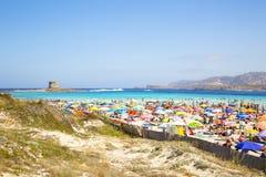 La Pelosa beach royalty free stock image
