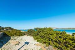 La Pelosa coastline. Aragonese tower seen from La Pelosa coastline, Sardinia Royalty Free Stock Photos