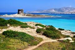 La Pelosa海滩, Stintino,撒丁岛,意大利视图  免版税库存图片