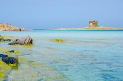 La Pelosa Stintino - Beautiful coast of sardinia in the north Royalty Free Stock Images