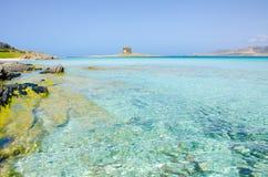 La Pelosa Stintino - costa bonita de sardinia no norte Fotos de Stock Royalty Free