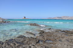 La Pelosa Stintino Sardinia island Italy. Summer Stock Photos