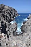 La Pelosa Stintino Sardinia island Italy. Summer Royalty Free Stock Images