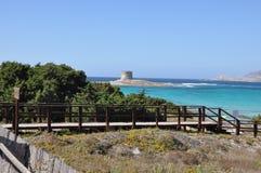 La Pelosa Stintino Sardinia island Italy. Summer Stock Photo